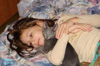 Дети, кошки и котята